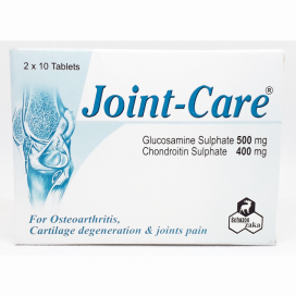 Joint Care Tablet 20s
